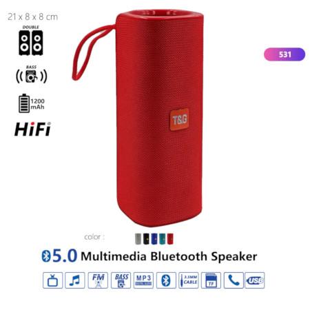 T&G 5.0 Multimedia Bluetooth Speaker.