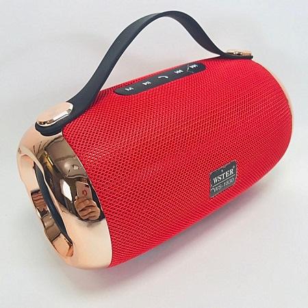 Wster WS-1830 Xtreme Portable Wireless Bluetooth Speaker