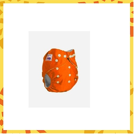Reusable Baby Diaper with 2 Inserts
