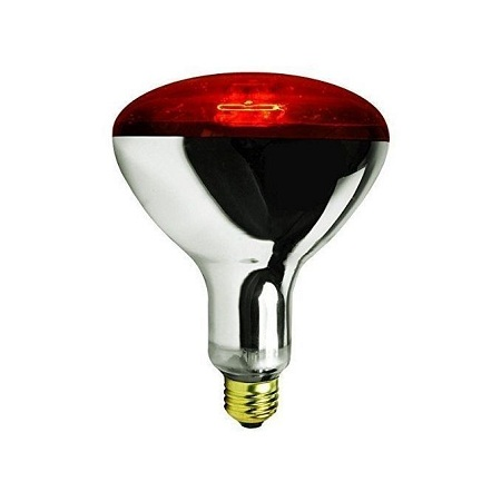 Poultry,chicken Bulb 250Watts