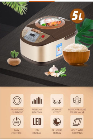Multi Function Rice Cooker
