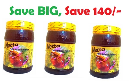 Necta Pure Natural honey - Buy 3Kg and save 140/-