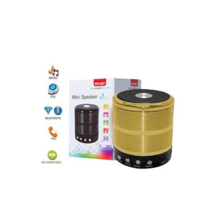 Wster WS887 Mini Bluetooth Speakers Gold
