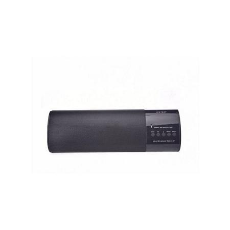 Wster Portable Wireless Speaker, MP3 Player & Radio