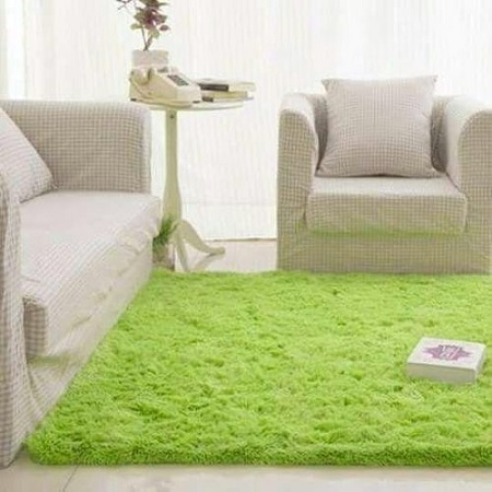 Fluffy Smooth Home, Bedroom or Living Room Carpet Rug