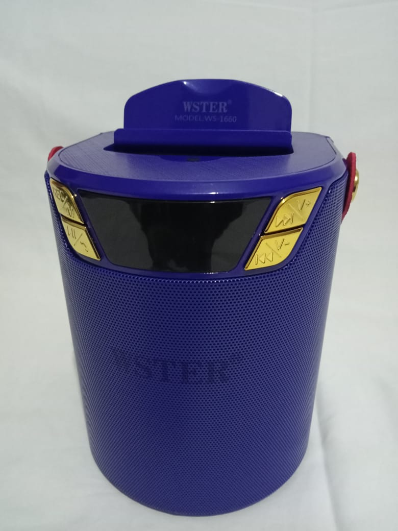 Wster WS-1660 Portable Wireless Bluetooth Speaker