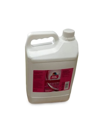 Ever Fresh Handsanitizer 5 Litres